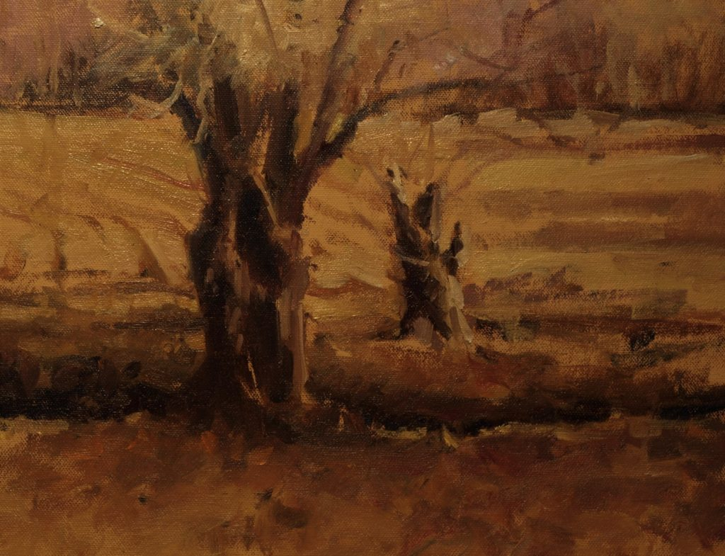 Ancient Willows, Oil on Panel, 11 x 14 Inches, by Susan Grisell, $300