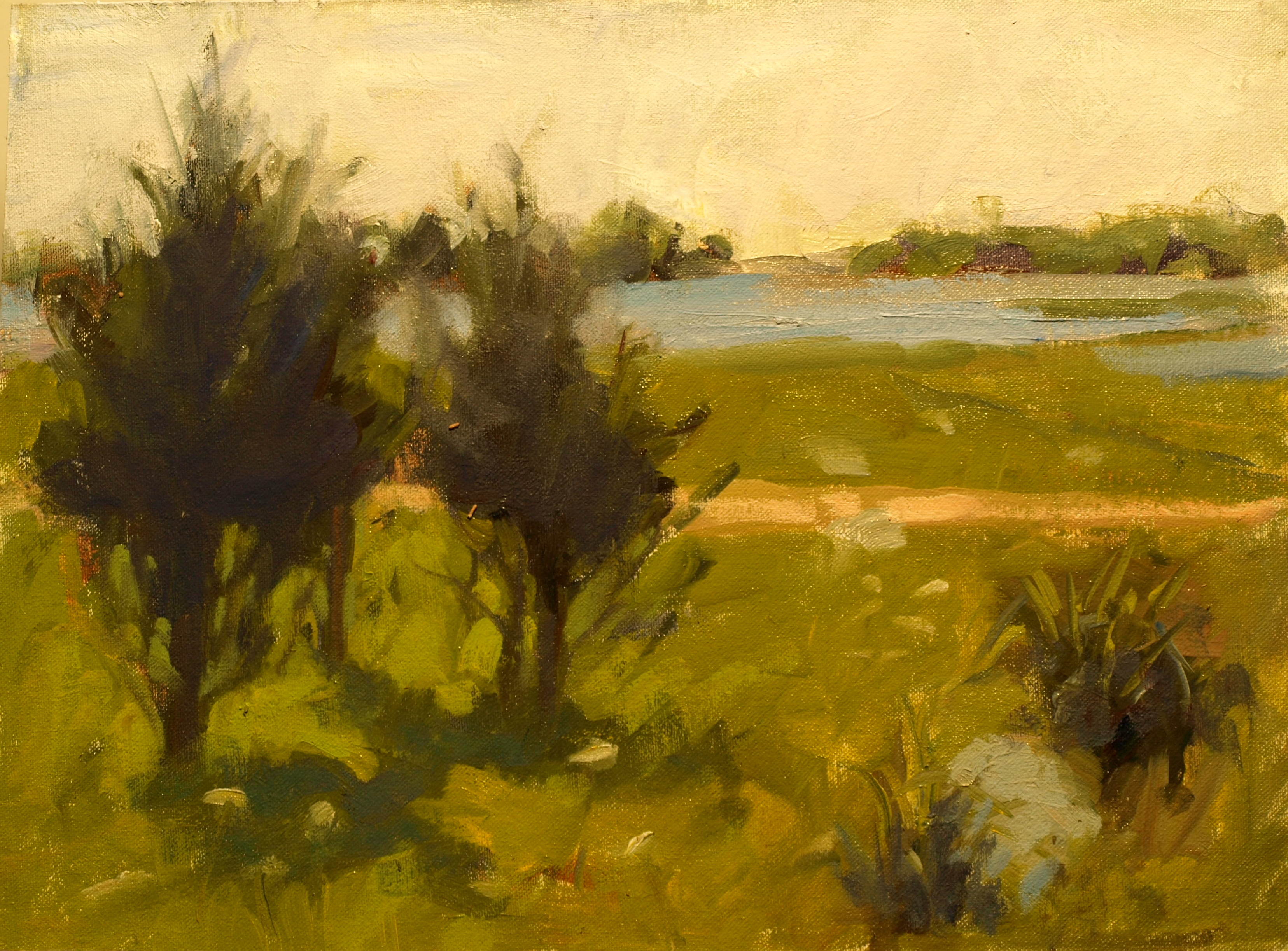 Cedars - Stonington, Oil on Canvas on Panel, 12 x 16 Inches, by Susan Grisell, $300