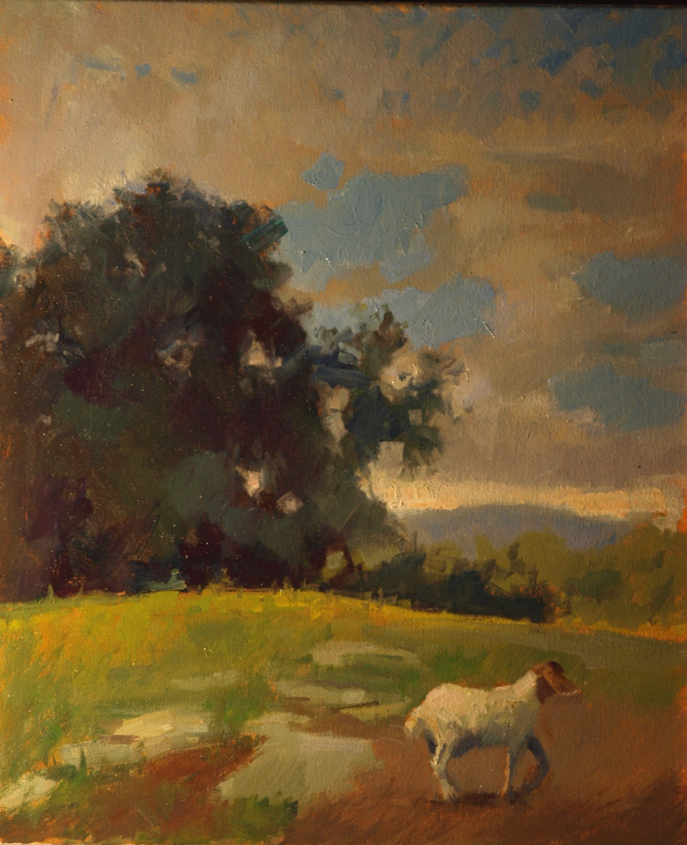 Goat Pasture, Oil on Canvas, 24 x 20 Inches, by Susan Grisell, $650
