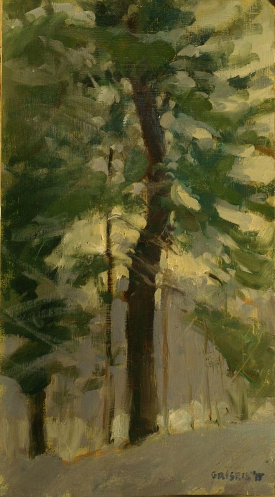 White Pine, Oil on Panel, 16 x 9 Inches, by Susan Grisell, $300