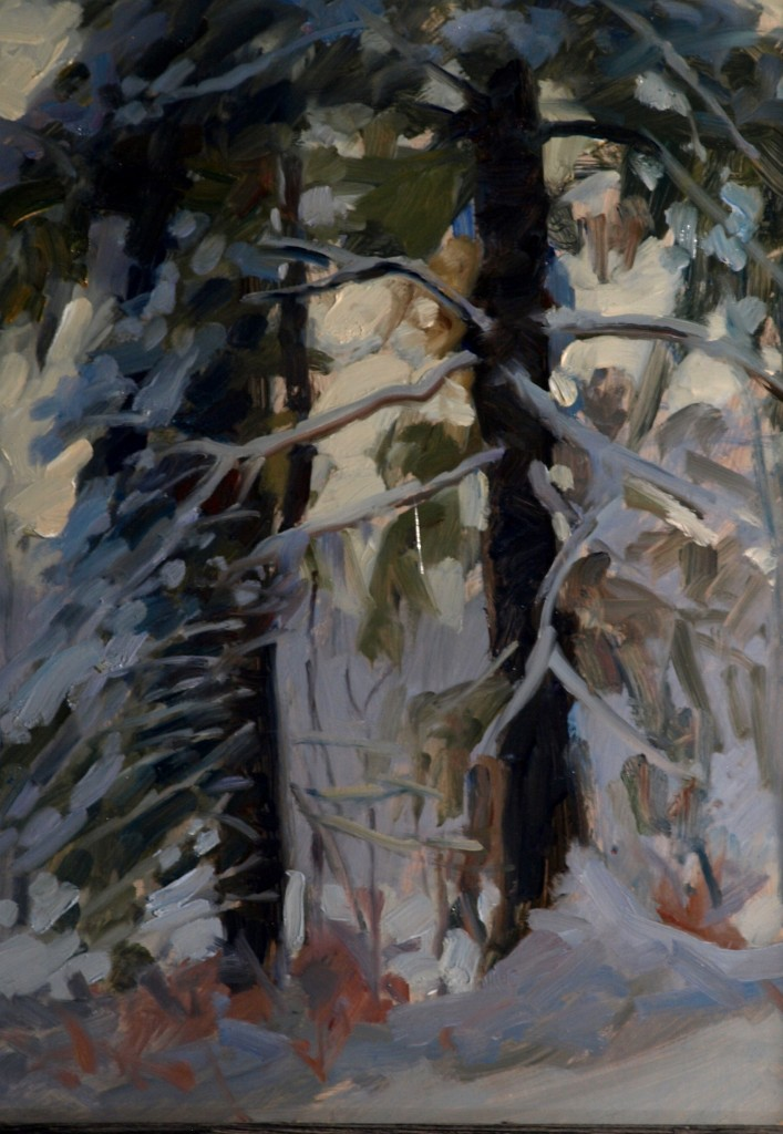 White Pine and Spruce, Oil on Panel, 16 x 12 Inches, by Susan Grisell, $275