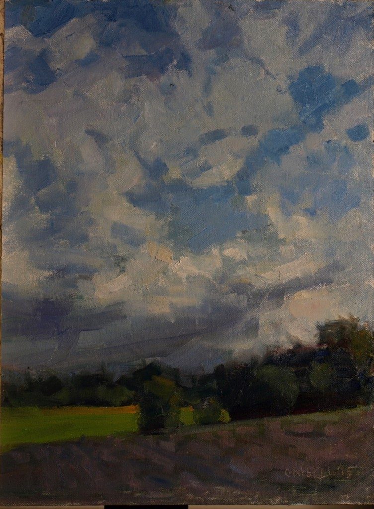 Fields and Clouds, Oil on Canvas on Panel, 16 x 12 Inches, by Susan Grisell, $315
