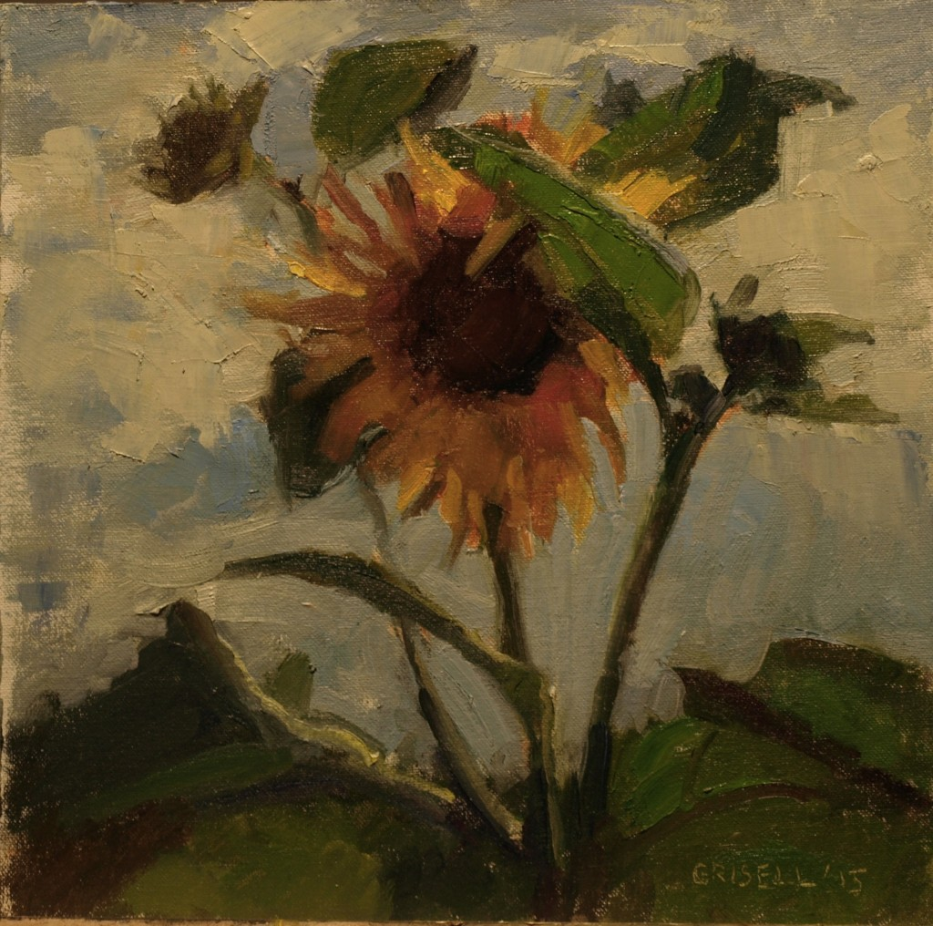 Sunflower, Oil on Canvas on Panel, 12 x 12 Inches, by Susan Grisell, $275