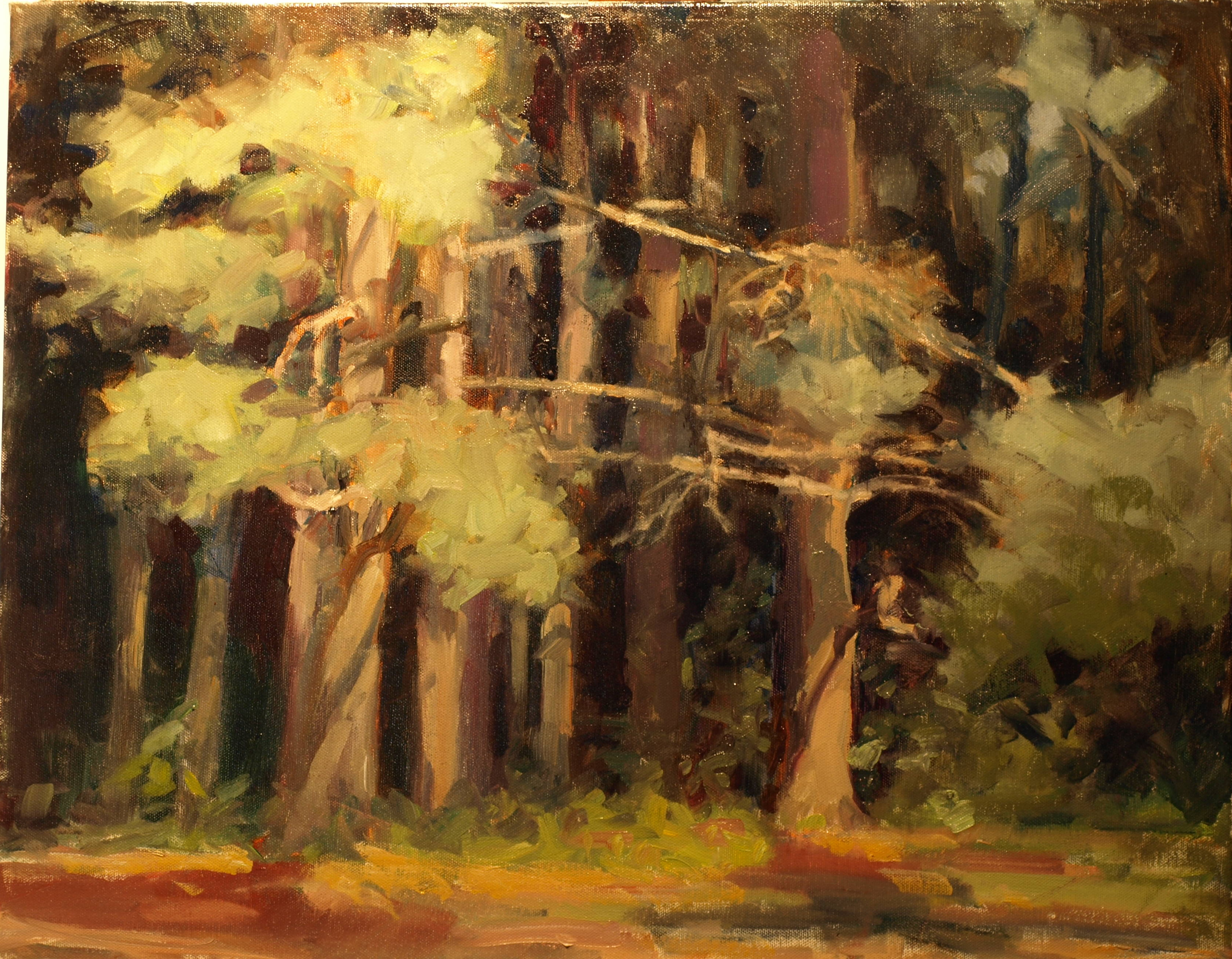 Pine Woods, Oil on Canvas, 20 x 24 Inches, by Susan Grisell, $750
