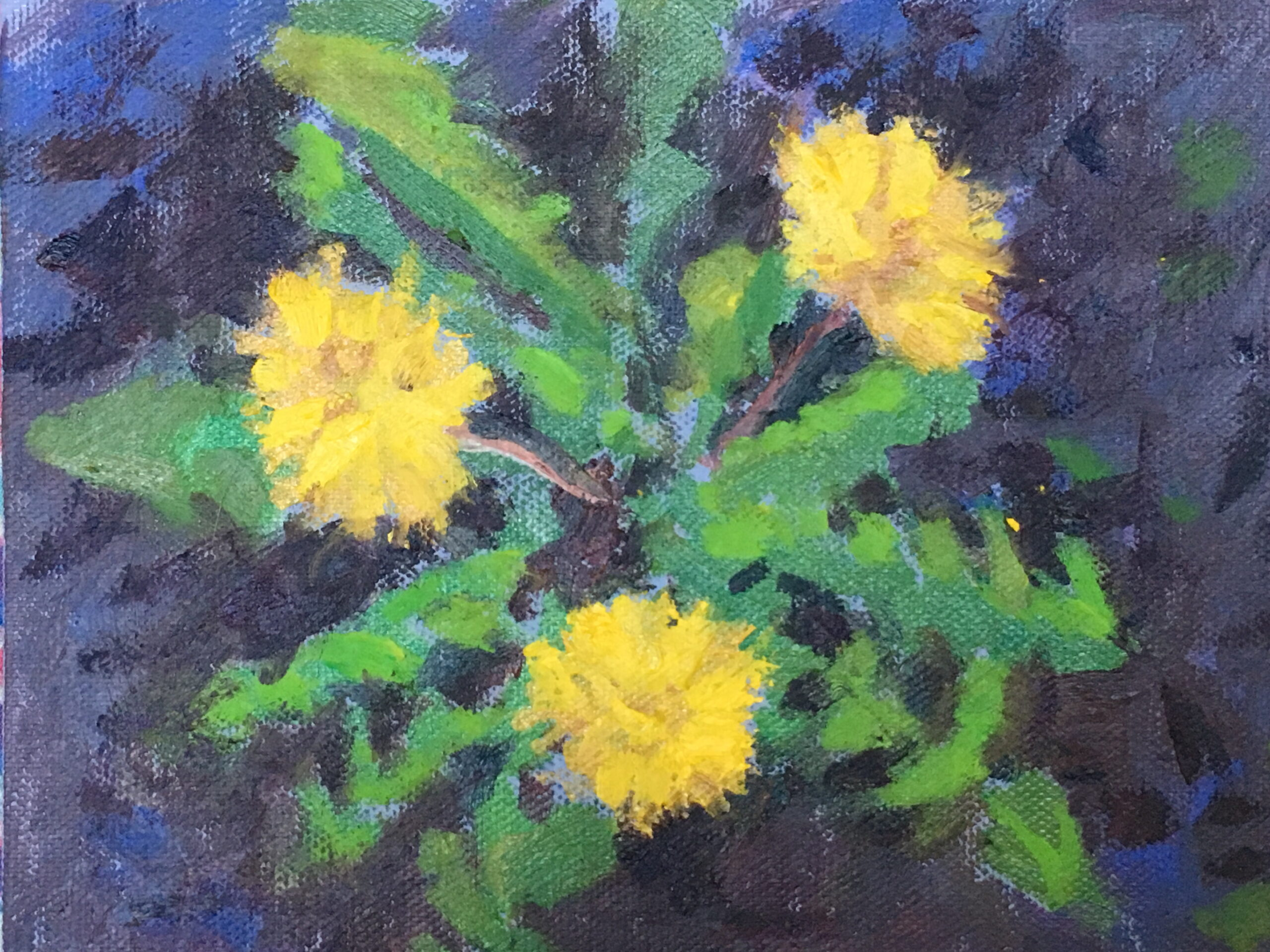Dandelions, Oil on Canvas on Panel, 6 x 8 Inches, by Susan Grisell, $200
