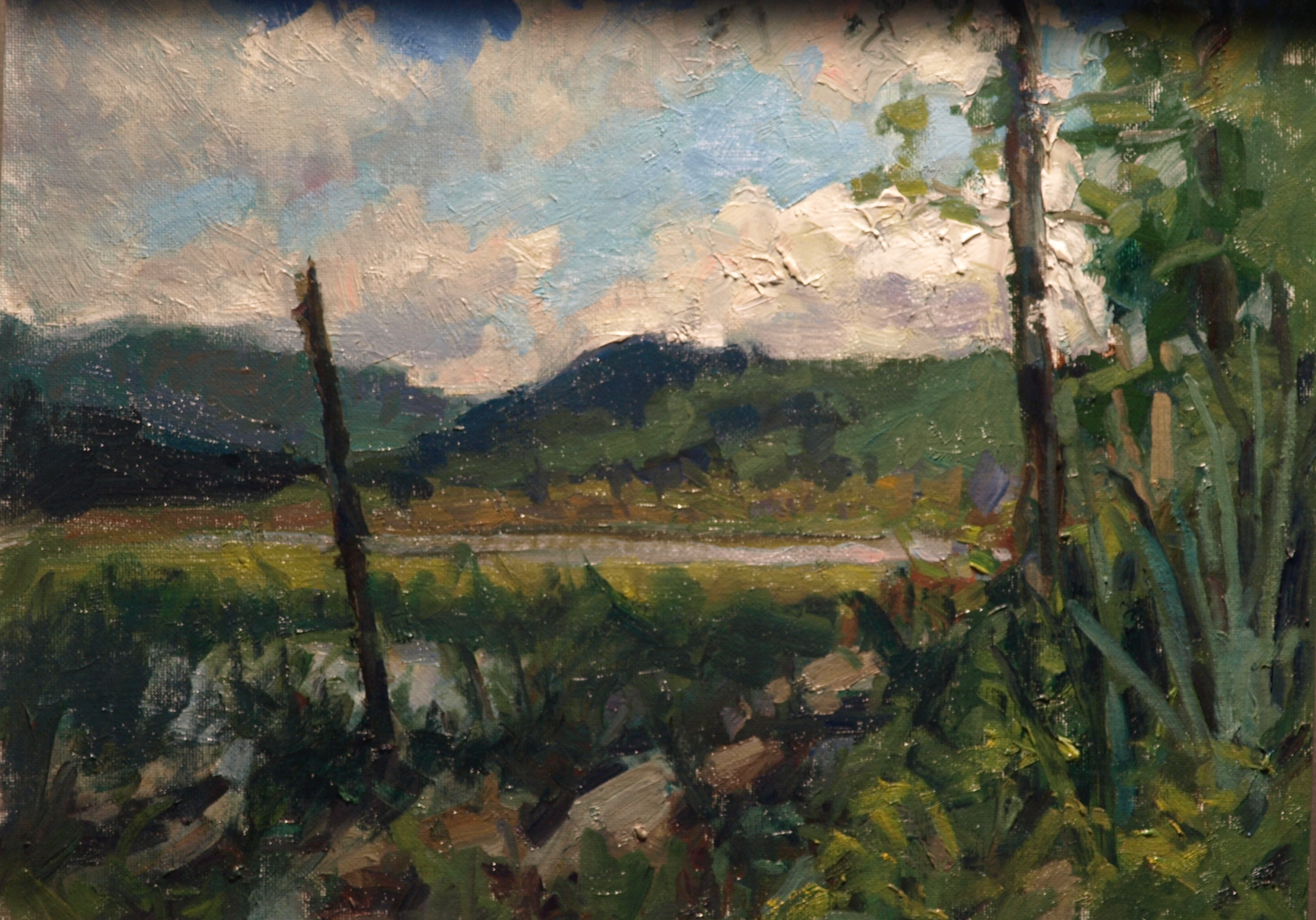 June at Mud Pond, Oil on Canvas on Board, 12 x 16 Inches, by Susan Grisell, $325