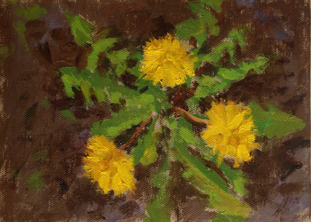 Dandelion, Oil on Canvas on Panel, 6 x 8 Inches, by Susan Grisell, $200