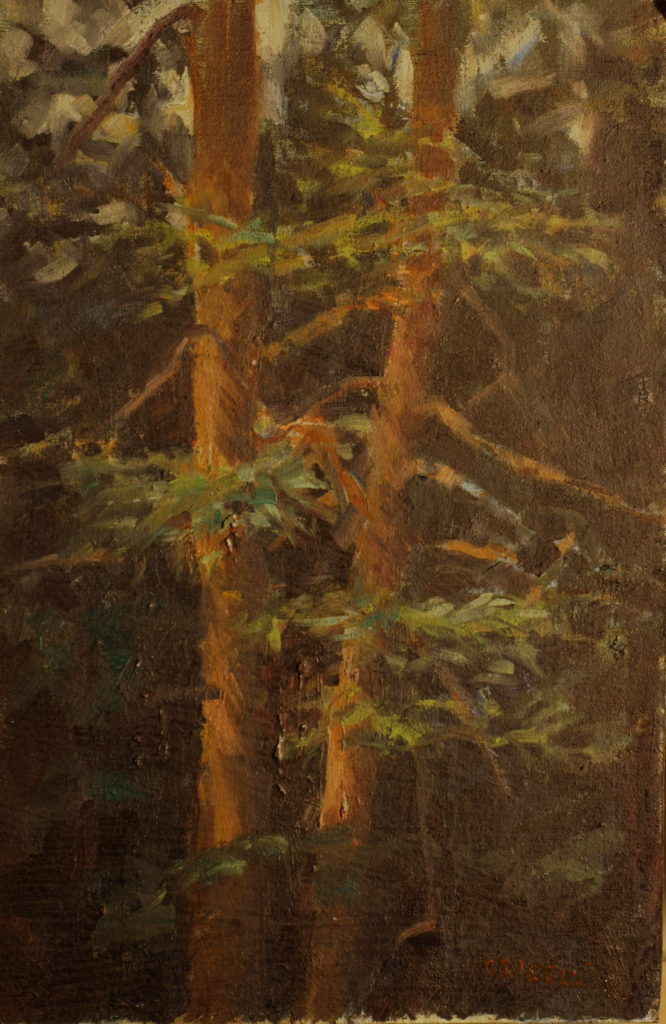 Hemlock, Oil on Canvas on Panel, 18 x 12 Inches, by Susan Grisell, $300