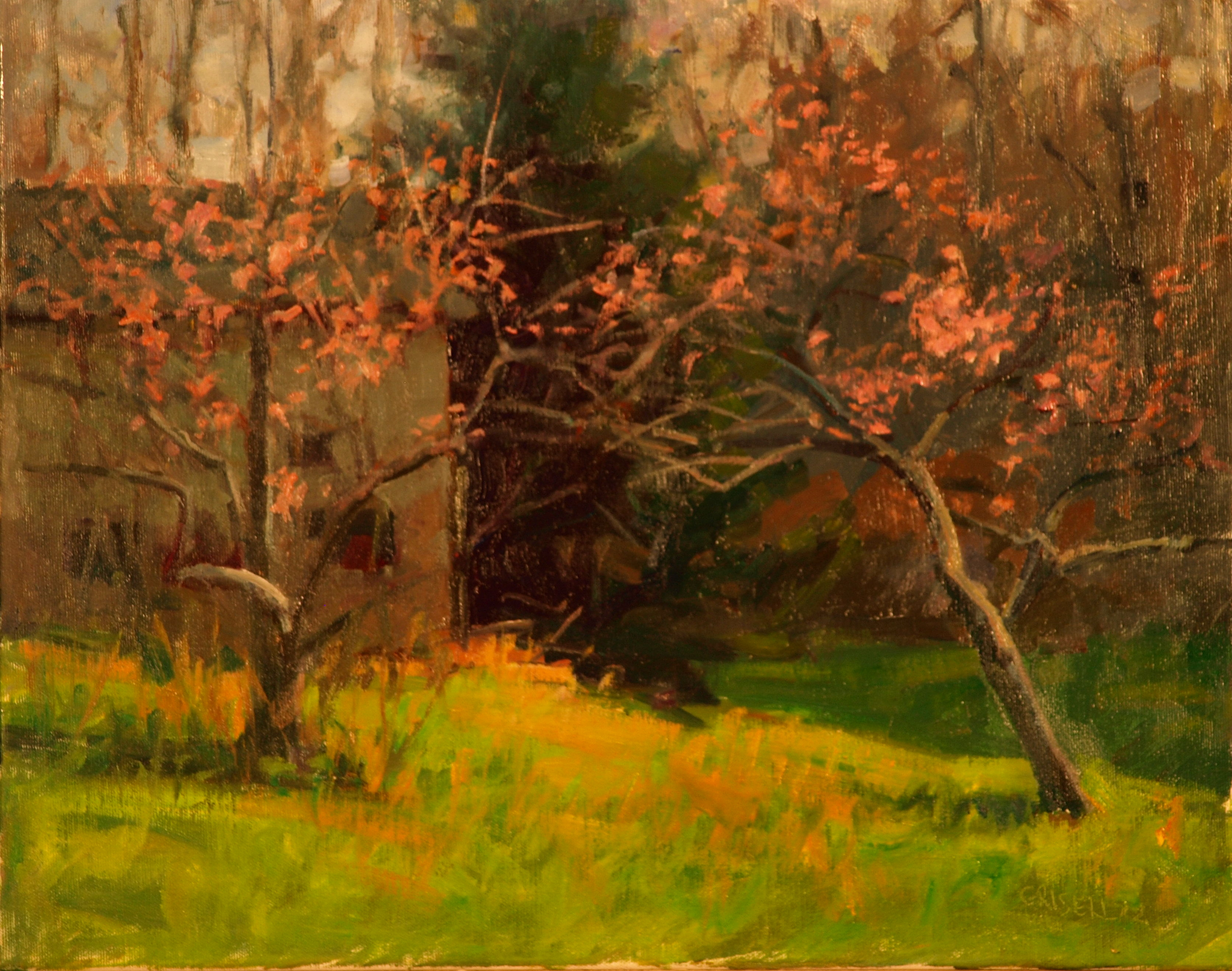 Peach Blossoms, Oil on Canvas, 16 x 20 Inches, by Susan Grisell, $450